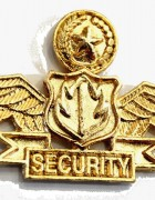 Security Wing ( CASTED )