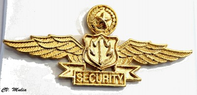 Wing Security cor