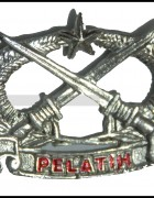 Pelatih Wing Badge ( White )