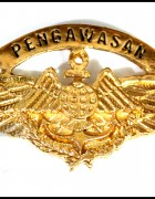 Pengawasan Wing Badge